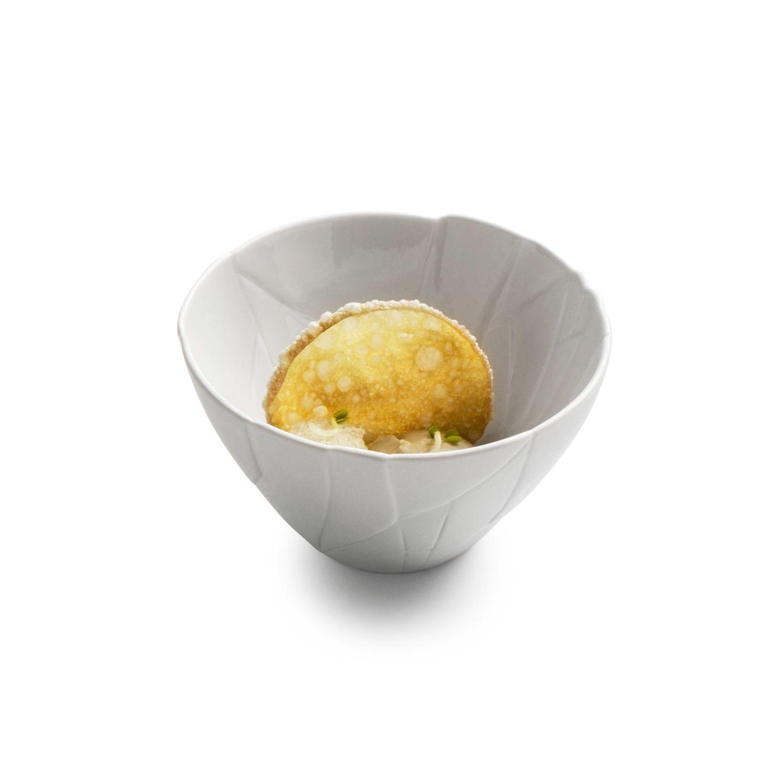 salatnik-trendcadis-glyanets-matovyj-12-7-sm-pordamsa